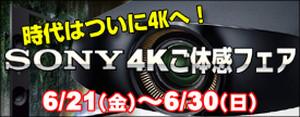 Bar_akiba_4k_275