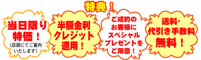 Yoko5_5sp